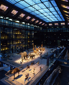 Museum of Natural History, Paris