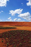 Thumbnail image of Red Sand Garden, Cranbourne