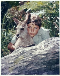 Skippy and Sonny from the TV show Skippy the Bush Kangaroo