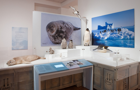 The 'Inhabitants' exhibit