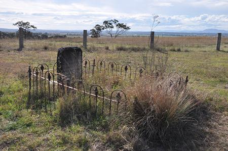 Peter Pan's grave, Baroona Stud