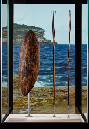 The Gweagal shield and gararra (fishing spears) collected by Joseph Banks in April 1770; on display at the National Museum of Australia, 2015–16