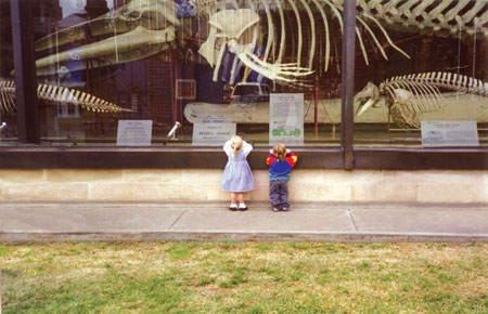 Education of young and old is an important role of a museum