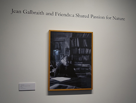 Portrait of Jean Galbraith at the Jean Galbraith and Friends exhibition