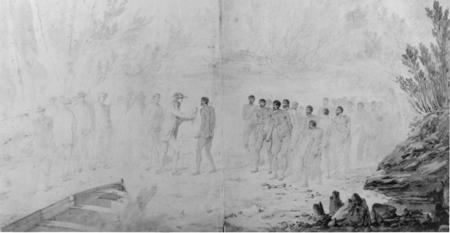 Captain Cook arrival picture