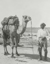 Man and camel thumbnail