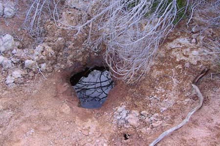 Soak showing how desert people were able to access water close to the surface with minimal digging, 2007