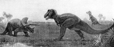 Fig. 7. Illustration 25 from AS Romer,      Man and the Vertebrates, Penguin, Harmondsworth, Middlesex, 1954 (1933), vol 1